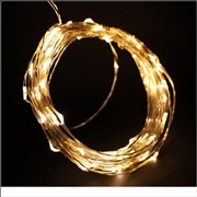 12V 10M Copper Wire LED String Light-Warm White Color